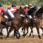 club-cabo-polo-ii-by-mariano-lemus-169