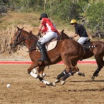 club-cabo-polo-ii-by-mariano-lemus-217